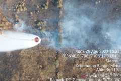 Dua ribu hektare lahan di Sumsel terbakar selama 2021